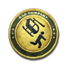 File:Gold Combat Aviator Patch.png
