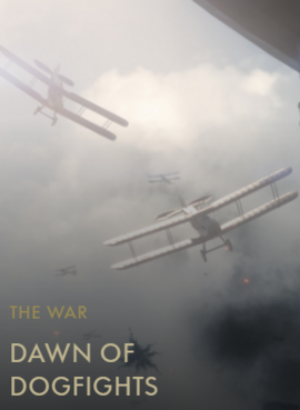 The Birth of Air Combat Codex Entry