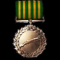 File:Scout Order of Valor Medal.png