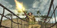 North Vietnamese Army