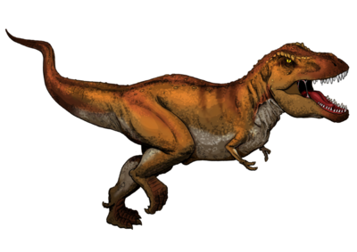 Tyrannosaurus Rex colored