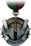 Anti Vehicle Medal.jpg