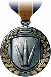 Assault Rifle Medal.jpg