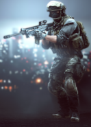 BF4 US support