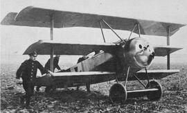 WW1 Fokker IRL