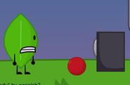Leaf and acc