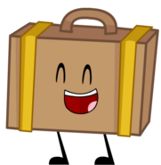 ACWAGT Suitcase Pose