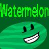 Watermelon's Pro Pic