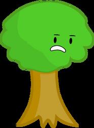 Bfsp portrait Tree