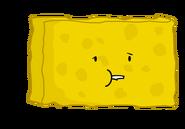 Spongggyyy