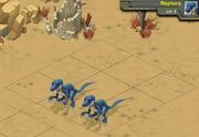 Raptors 5b