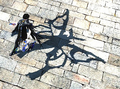 Madama Butterfly Shadow.png