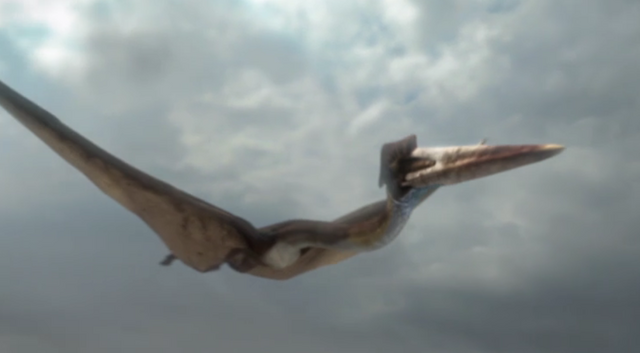 File:Hatzegopteryx.png