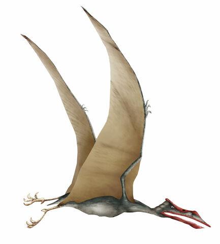File:Quetzalcoatlus.jpg