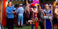 The Renaissance Fair