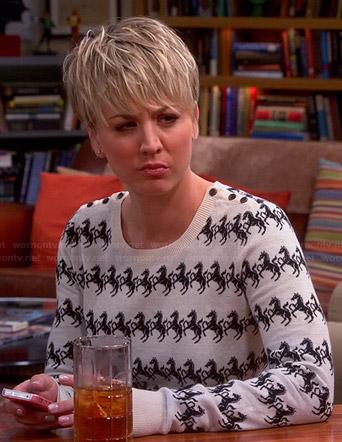 File:S08E15HorseSweater.jpg