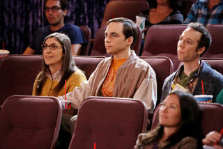 The Decoupling Fluctuation Sheldon, Amy and Stuart