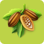File:CacaoBeans.png
