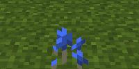 Blue Milk Cap