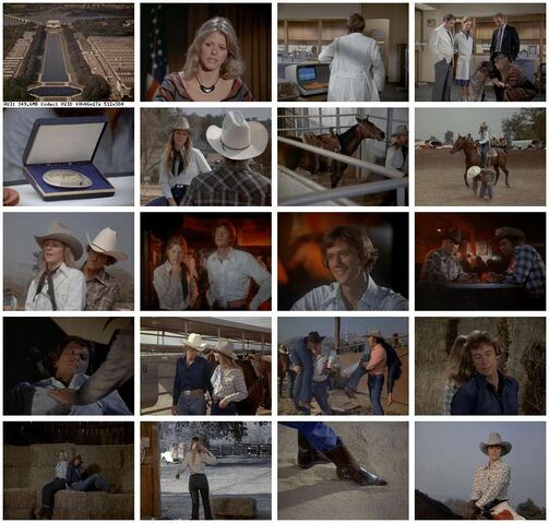 File:Th-The.Bionic.Woman.S03E05.DVDrip.XviD-SAiNTS.jpg