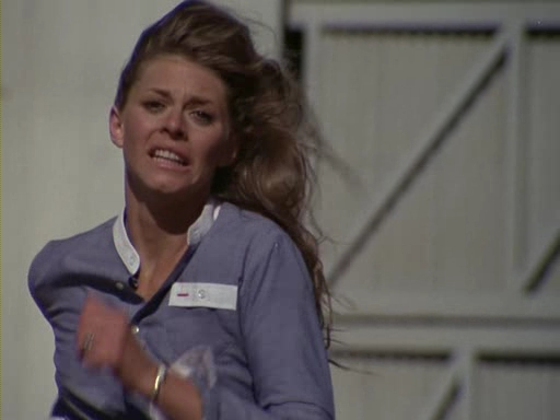 File:The.Bionic.Woman.S03E04.DVDrip.XviD-SAiNTS.avi 002642080.jpg