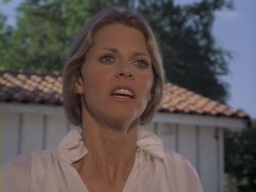 File:The.Bionic.Woman.S03E01.DVDrip.XviD-SAiNTS.avi 002586440.jpg