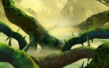 Region-of-Jungle