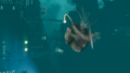 SharkandAnglerfish.png