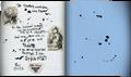 Lutwidge journal last.png