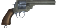 Pistol (Rapture)