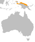 Northern cassowary distribution