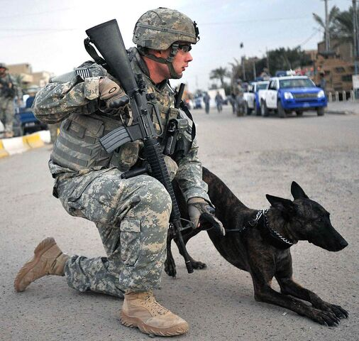 File:Police soldier with dog.jpg