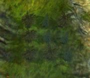 Treepuzzle