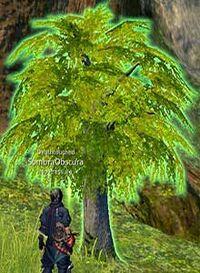 Sidequest jadestone a bulbaris tale pic01