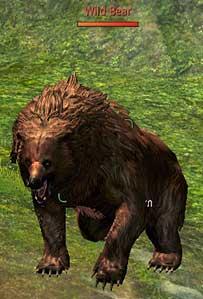 File:Storyquest pondskip grin n bear it pic01.jpg