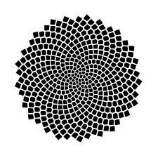 The Blossom Spiral