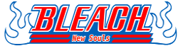 Bleach New Souls Wiki