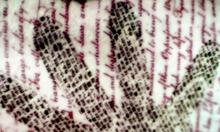 Handprinttat