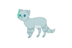 Mintfeather drawing