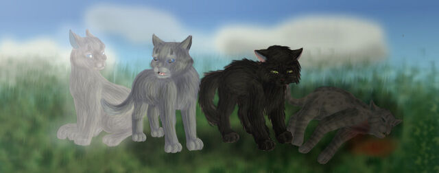 File:The outcasts of thunderclan by hareclawofskyclan-d4lvb2u.jpg
