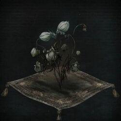 Coldblood Flower Bulb