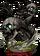 Skull Fish Figure
