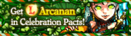 Celebration Pact Banner March 2014