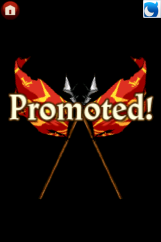 File:Promoted.PNG