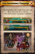First Anniversary Campaign Promo