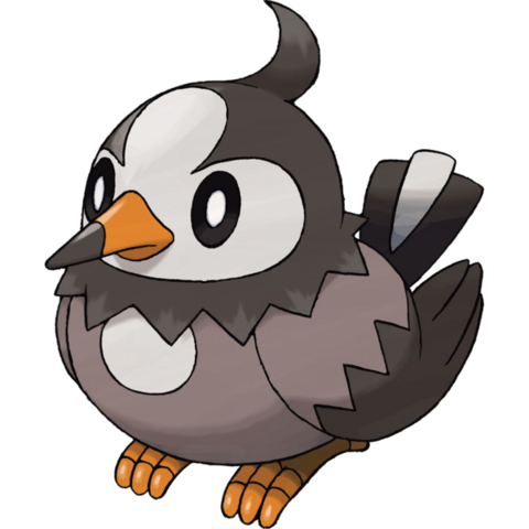 File:Barry's Starly.png
