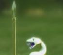 Golden Poo Snake
