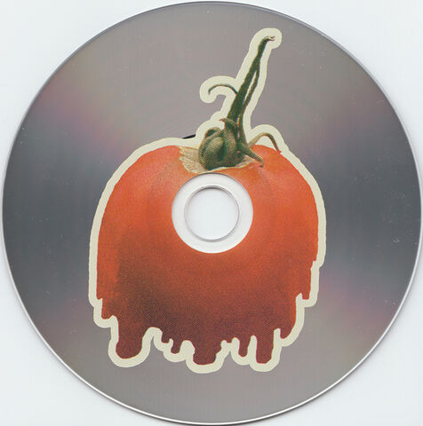 File:Bmsr drippers disc.jpg