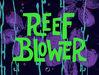 1b Reef Blower