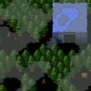 Forestofdespair5